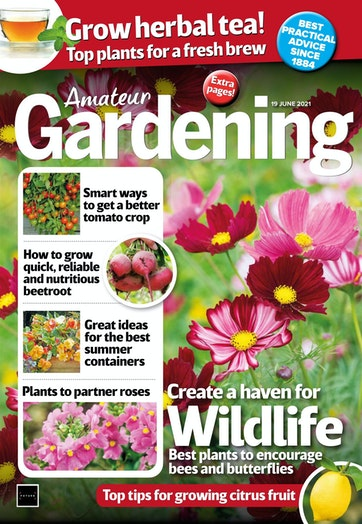 Amateur Gardening Preview