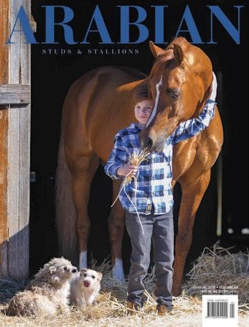 Arabian Studs & Stallions Preview