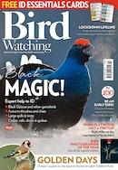 Bird Watching Discounts