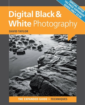 Black + White Photography Preview