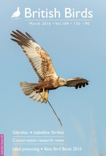 British Birds Preview