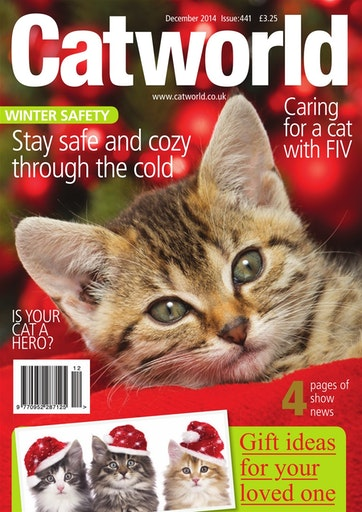 Cat World Preview
