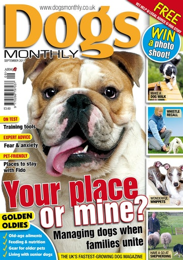 Dogs Monthly Preview