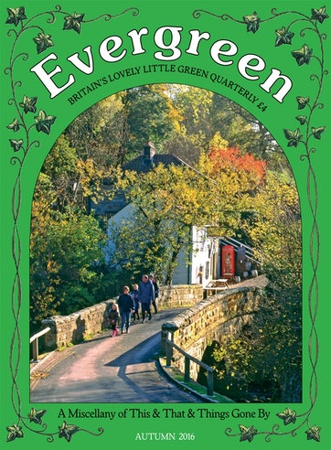 Evergreen Preview