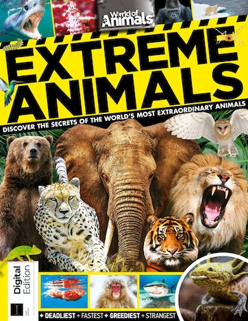 Extreme Animals Preview