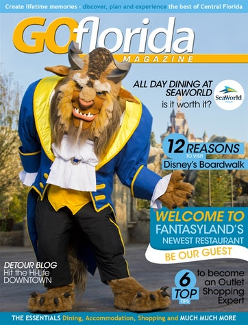 Go Florida Magazine Preview