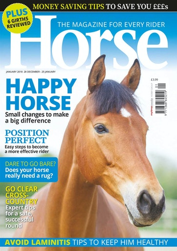 Horse Preview