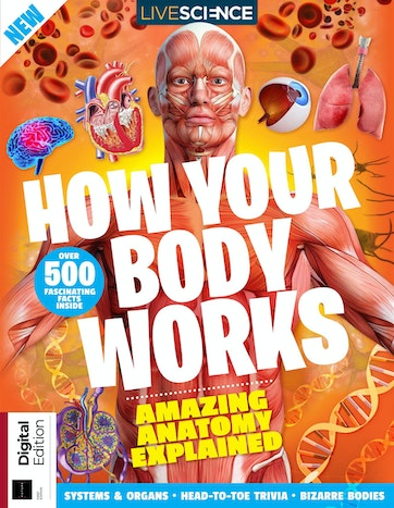 How Your Body Works Preview