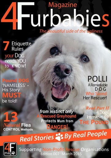 Mag 4 Furbabies Preview