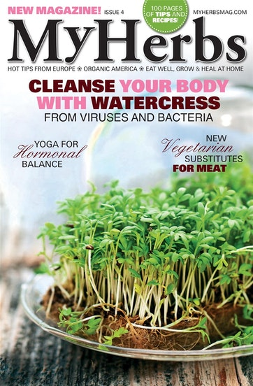 My Herbs Magazine Preview