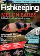 Practical Fishkeeping Discounts
