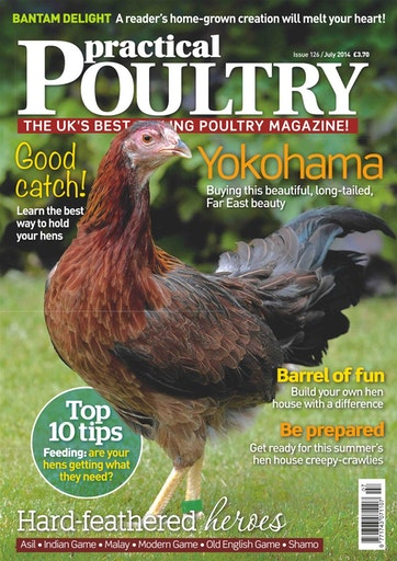Practical Poultry Preview