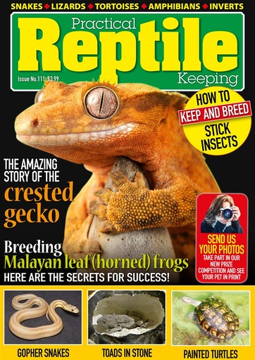 Practical Reptile Keeping Preview