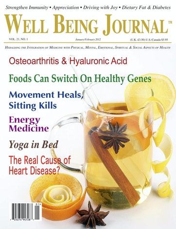 Well Being Journal Preview