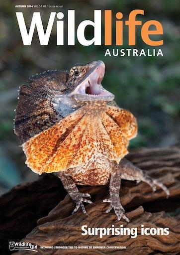 Wildlife Australia Preview